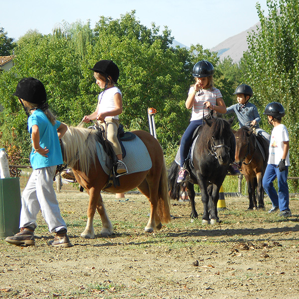 Family programme - Sports and Activities in Eastbourne : Horse riding.